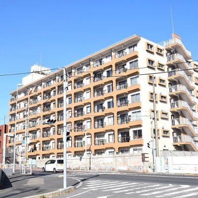マンション外観(大規模修繕工事中:平成31年3月末完成予定)